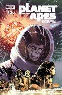 Planet Of The Apes: Cataclysm #12 (2013)