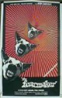 Rancho Del Miedo (1971)