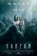 Legend Of Tarzan, The (2016)