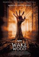Wake Wood (2011)