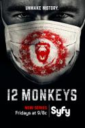 12 Monkeys: Season One (2015)